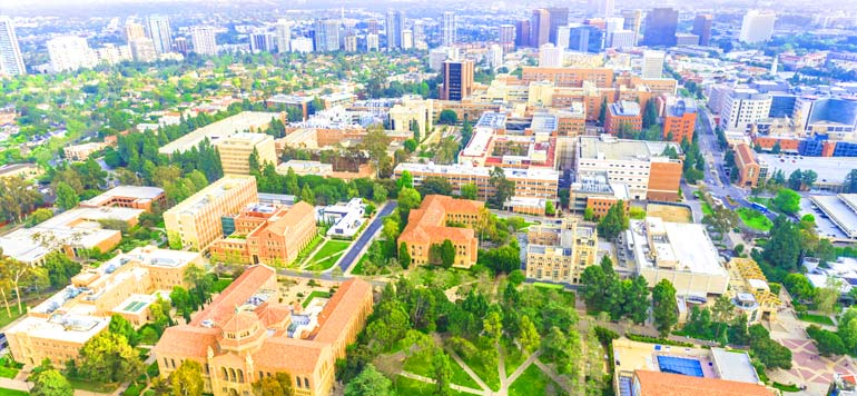 University of California – Los Angeles